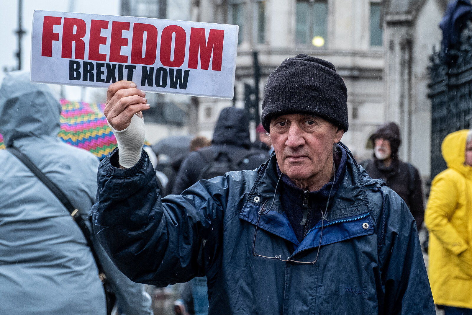 Pro Brexit Protester