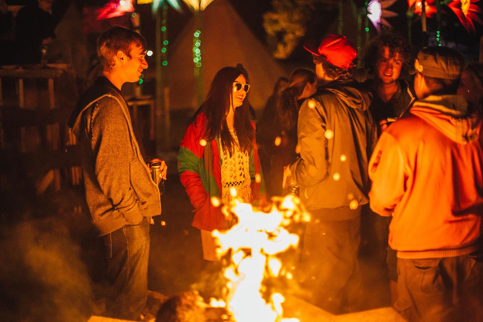 Shambala Festival 2014