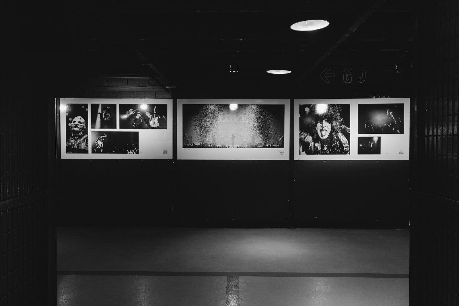 Exposition Zénith Paris 2016