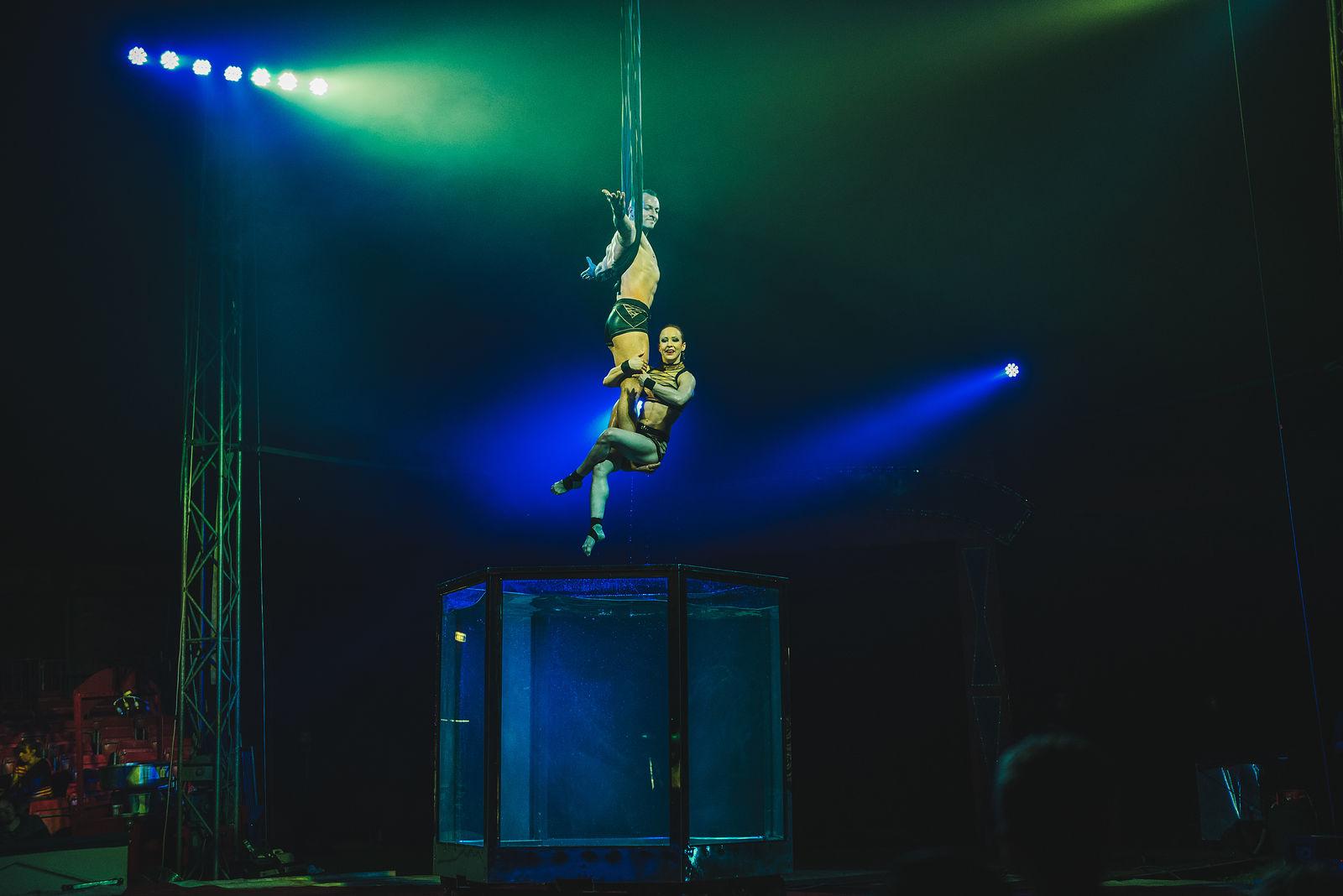 Gandey's Circus