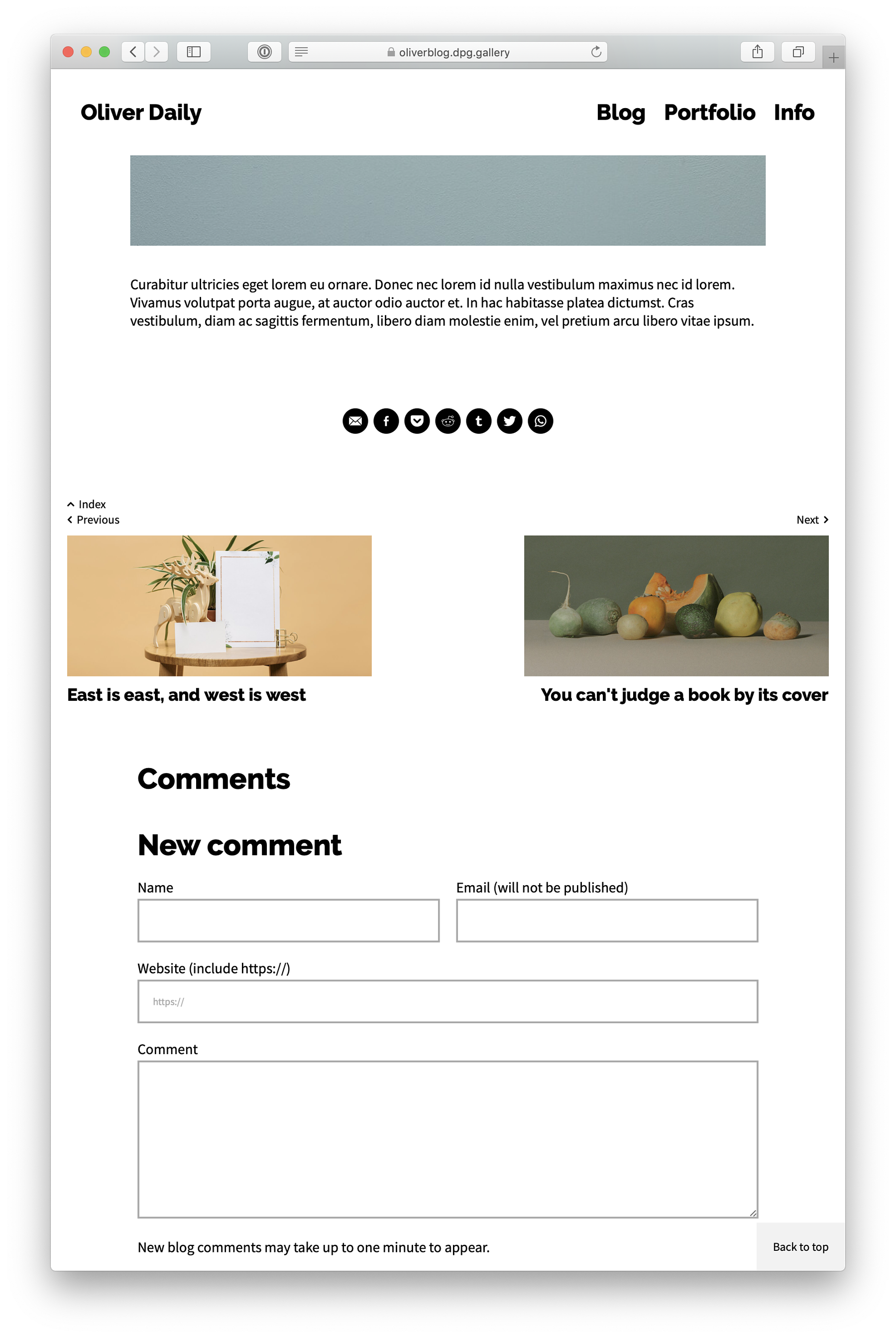 Screenshot of a website showing the new Dedicated Blog template in post view, with post navigation and comments
