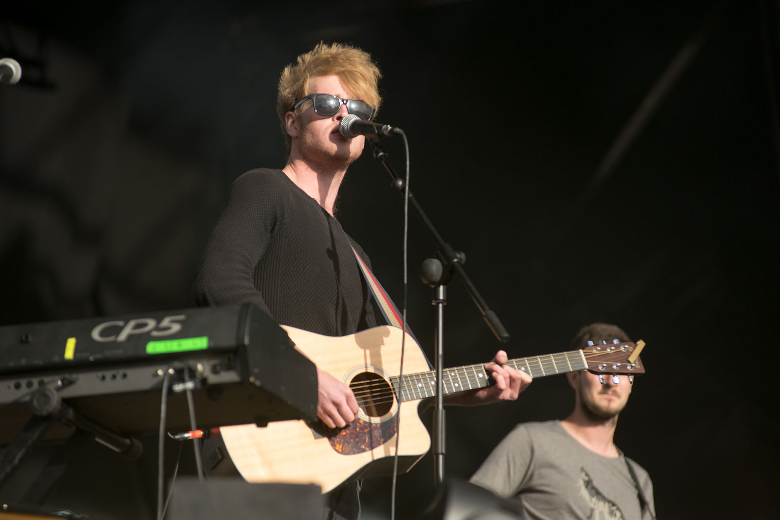 Electric Picnic 2013
