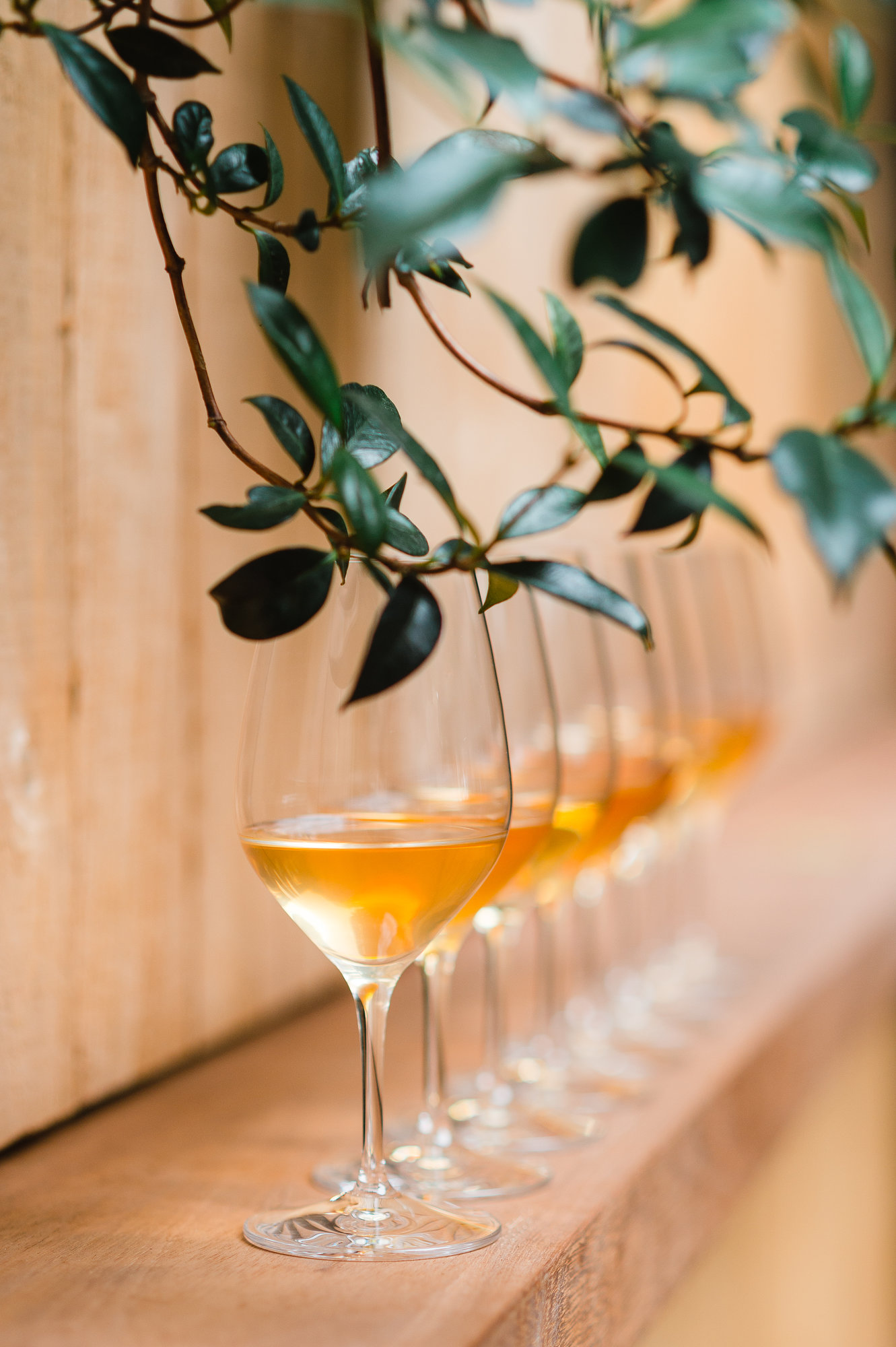Imbibe's Orange Wine Tasting