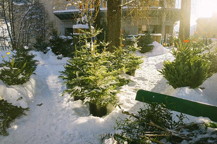 krisatomic_decemberdiary_39