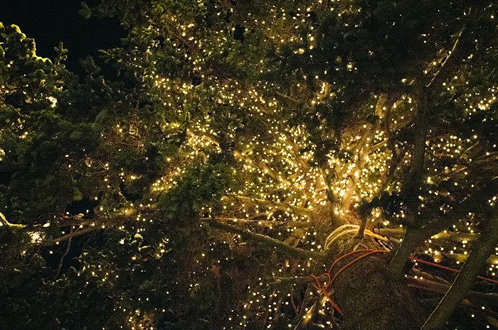 krisatomic_decemberdiary_18