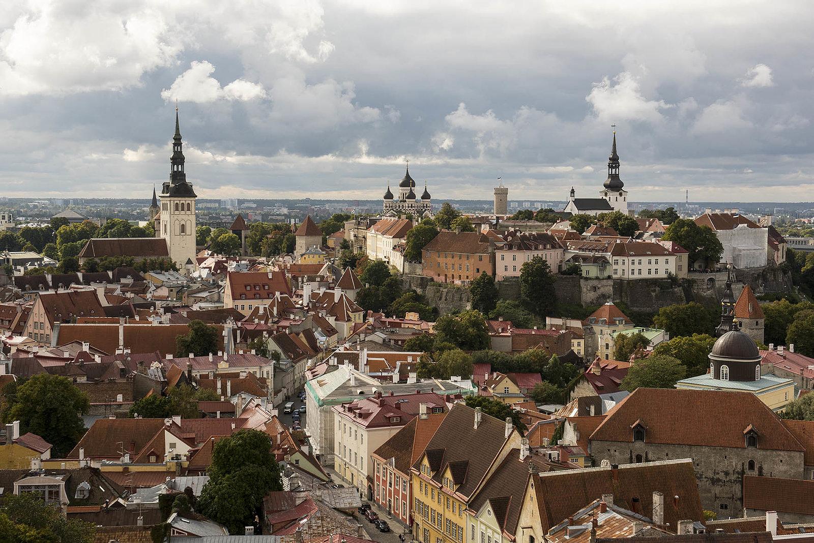 Tallinn From St. Olav's Church